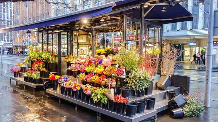 Huntsville SEO Expert Tips for Online Floral Business